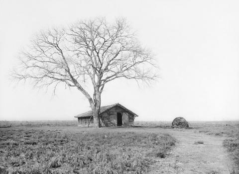 Sabres, autre parc des Cabanious, avec 1 chêne, 150 m plsua u nord, 26 février 1907