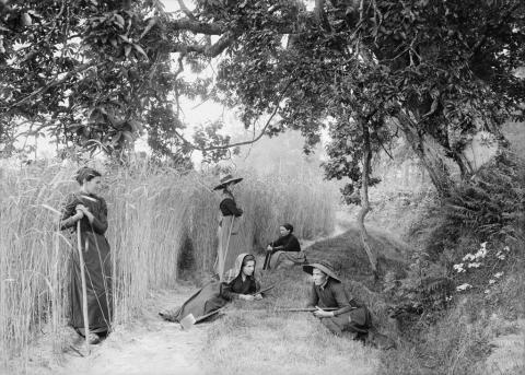 Lue Gruté sarcleuses 11 juin 1898