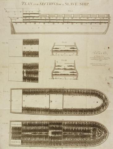 Plan et coupe d'un navire négrier, le Brooks, 1789. Détail. Coll. musée d'Aquitaine, legs M. Chatillon. ©photo J.M Arnaud mairie de Bordeaux