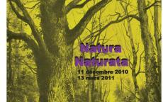 Natura naturata, exposition 2010-2011, ©mairie de bordeaux