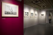 Exposition Félix Arnaudin, le guetteur mélancolique, vue des salles d'exposition ©mairie de Bordeaux