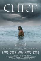 """Porjection du film """"Chief"""" de Brett Wagner au Musée d'Aquitaine"""